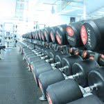 gymmet-friavikter